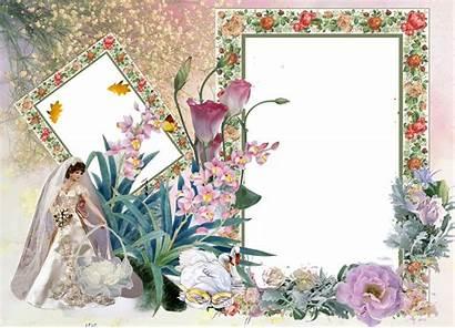 Photoshop Frames Frame Psd Backgrounds Album Karishma