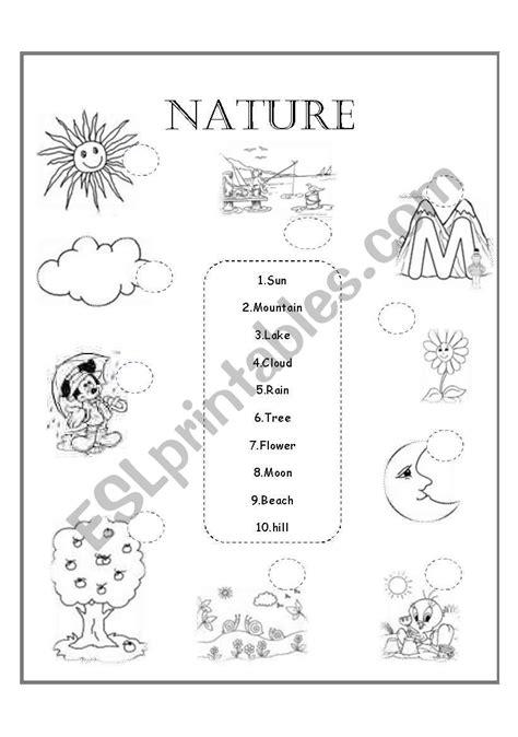 Nature - ESL worksheet by Amygm