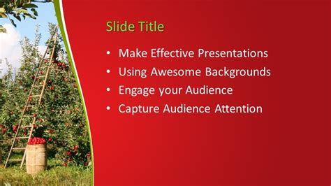 apples tree powerpoint template  powerpoint