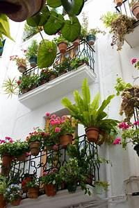 Idees Deco Balcon Plantes Accueil Design Et Mobilier