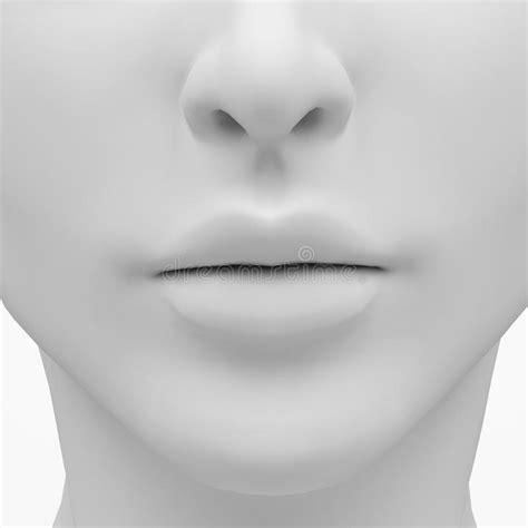 Wunderbar Nase Anatomie 3d Ideen  Menschliche Anatomie