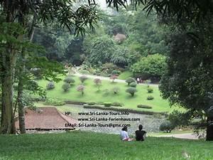 Sri Lanka Immobilien : sri lanka tours rundreisen erleben sri lanka ferienhaus sonstige in niederlande ~ Markanthonyermac.com Haus und Dekorationen