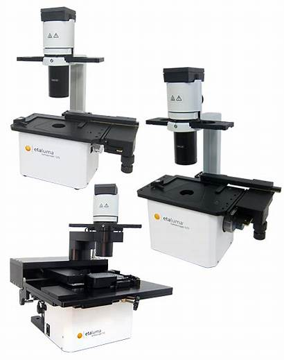 Cell Imaging Microscopes Ls Resolution