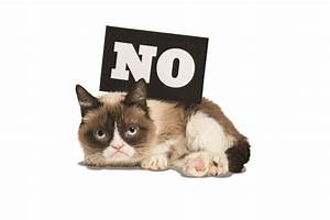 Essential Grouch Day Reading from Grumpy Cat - Chronicle ...