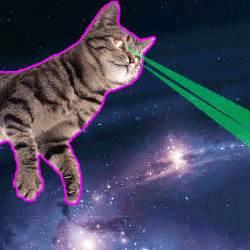 cat laser lazer space cat