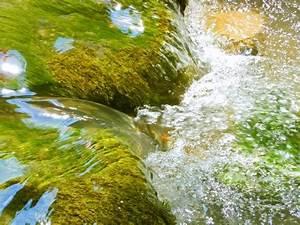Feng Shui Wasser : das element wasser ~ Indierocktalk.com Haus und Dekorationen