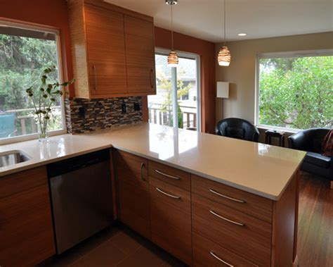Seattle Kitchen Remodel   Ventana Construction Seattle