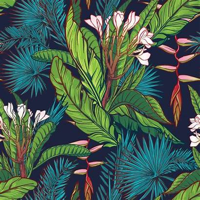 Jungle Tropical Pattern Background Leaves Murals Palm
