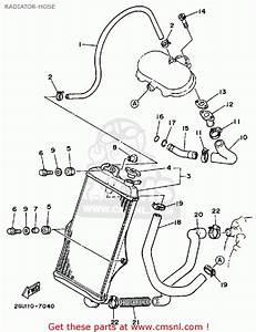2006 Yamaha Banshee Wiring Diagram  Diagram  Auto Wiring