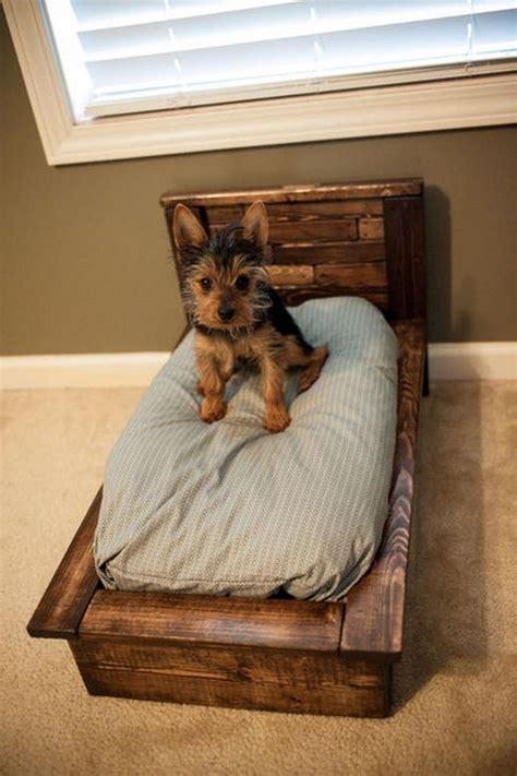 diy pet bed ideas   inspiration interiorsherpa
