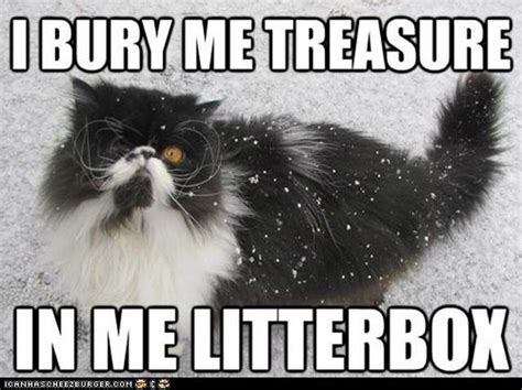 Pirate Meme - the 20 awesomest memes for international talk like a pirate day