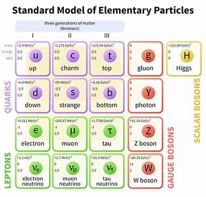Science Astrophysics Spacetime Notes Standard Particles Particle