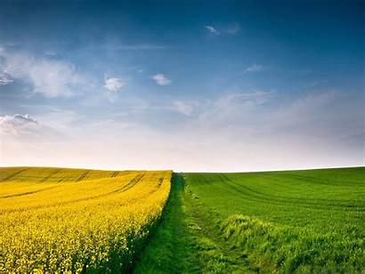 Summer Season Countryside Wallpapers Seasons Background Screen
