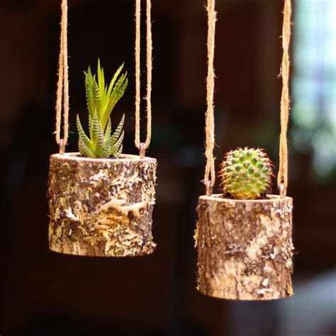 rustic plants hanging planter indoors rustic hanging succulent planter log