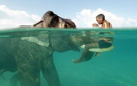 Incredible India  Andaman And Nicobar Islands Angamen