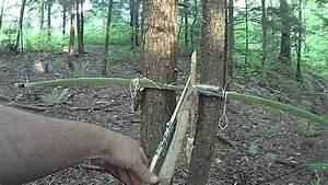 Wedge Stick Bow  U0026 Arrow Trap