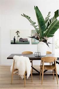 Pflegeleichte Zimmerpflanzen Mit Blüten : sch ne zimmerpflanzen so dekorieren sie ihr zuhause mit pflegeleichten pflanzen ~ Markanthonyermac.com Haus und Dekorationen