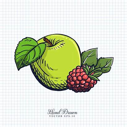 Fruit Drawn Hand Vegetable Illustration Vector Clipart