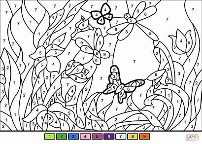 Coloring Flower Pages Garden Number Printable Sheets