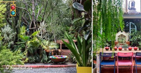 สวนแคคตัส สีสันจัดจ้านในสวนทนร้อนสไตล์เม็กซิกัน-บ้านและสวน