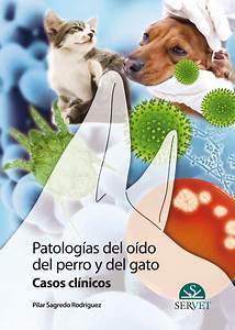 Patolog U00edas Del Oido Del Perro Y Del Gato  Casos Cl U00ednicos