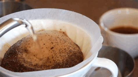 People interested in giant cup of coffee meme also searched for. Coffee GIF - Find & Share on GIPHY