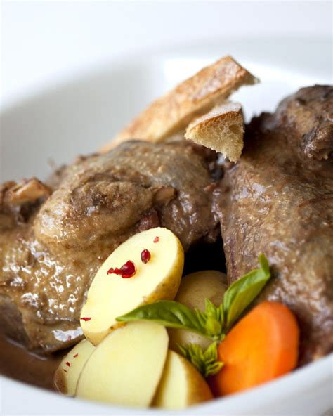 cuisine sauvage recettes recette canard sauvage en salmis