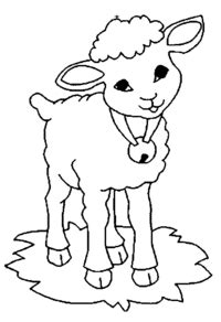 sheep coloring pages for preschool preschool and 183   sheep colouring pages for preschool free printable coloring