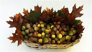 Herbstdeko Selber Gestalten Parkett Direkt Magazin