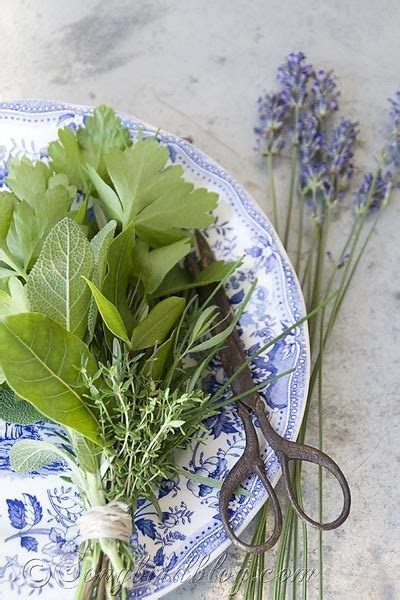 cuisine bouquet garni 77 best images about food drink herbs spices see all