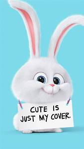 Cute Is Just My Cover Rabbit Android Wallpaper free download