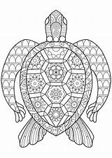 Turtle Coloring Turtles Zen Abstract Patterns Adult Animals Regular sketch template