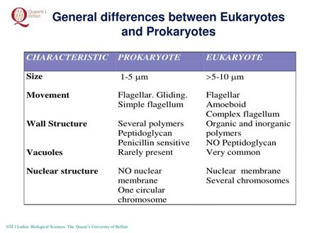 difference between l and light ppt overview of microbial diversity three kingdoms