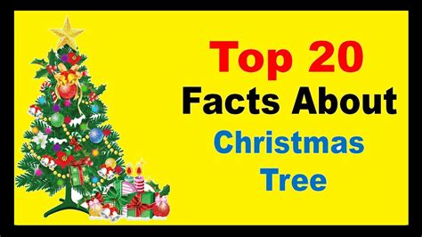 Christmas Tree  Facts Youtube