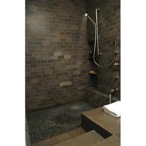 Best Plants For Bathroom No Window by Roman Tub Shower Modern Bathroom Other Metro By