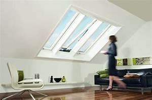 Insektenschutz Dachfenster Schwingfenster : roto dachfenster kombination drilling mit r8 wohndachfenster wohndachfenster dachgauben ~ Frokenaadalensverden.com Haus und Dekorationen