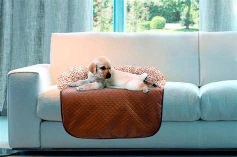 Heim Hundedecke Und Katzendecke »sofa Schutzdecke Leo