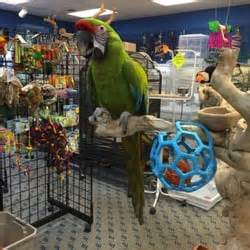 bird fever pet stores indianapolis in reviews