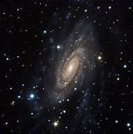 Canis Major Galaxies