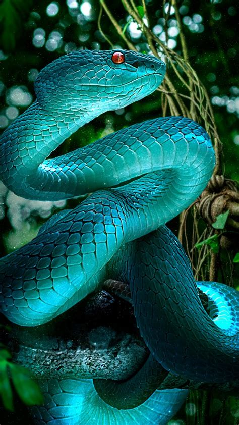 blue snake  wallpapers hd wallpapers id