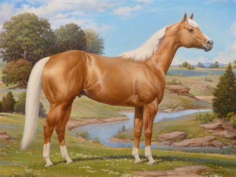 horse palomino quarter american horses paintings mixer orren painting stallion association museum caballo hall fame celebrated most artwork artist thoroughbred