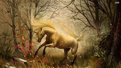 Enchanted Unicorn Forest Horse Backgrounds Imagens Fantasy