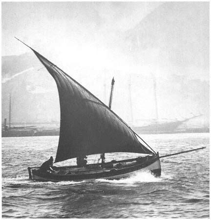 Monterey Swan Boats by Lateen Rigged Felucca Saw One Of These Hanging In The