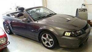 2003 Mustang Cobra Terminator 38,900 miles for Sale in Spring Valley, California Classified ...