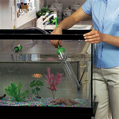 how to clean a fish tank how to make a self cleaning fish tank joy studio design gallery best design
