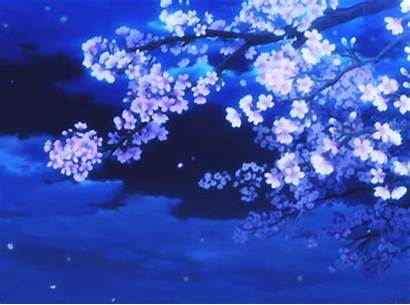 Blossom Cherry Ice Crystal Sweet Animated Sesshomaru