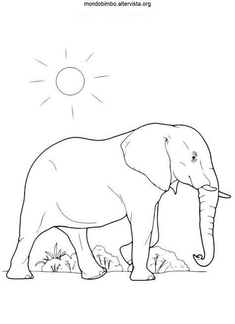 incantevole disegni  elefanti da colorare  bambini