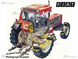 Fiat 1180 DT - Fiat - Machinery Specifications - Machinery