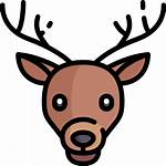 Deer Icons Icon Flaticon