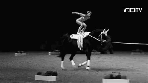 Black And White Horse GIF - Find & Share on GIPHY
